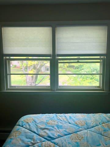 Bright corner room with 3 windows