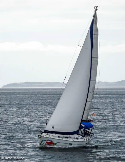 Sailing boat 35ft Benneteau