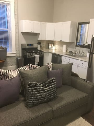 One-bedroom apartment near Forest Park - St. Louis - Apartment