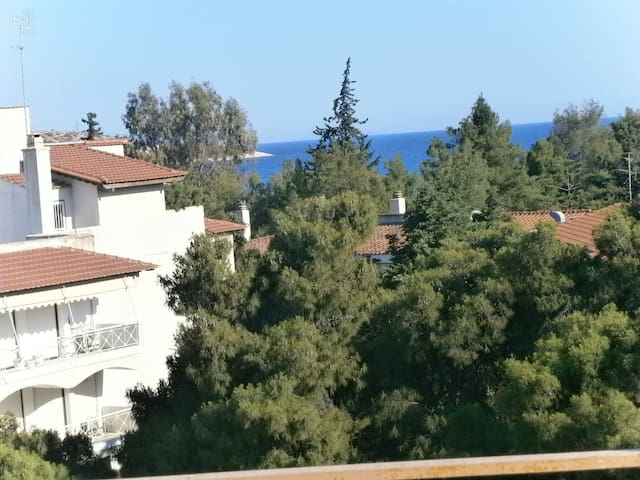 SUNNY PENTHOUSE WITH SEAVIEW - Vouliagmeni - Byt