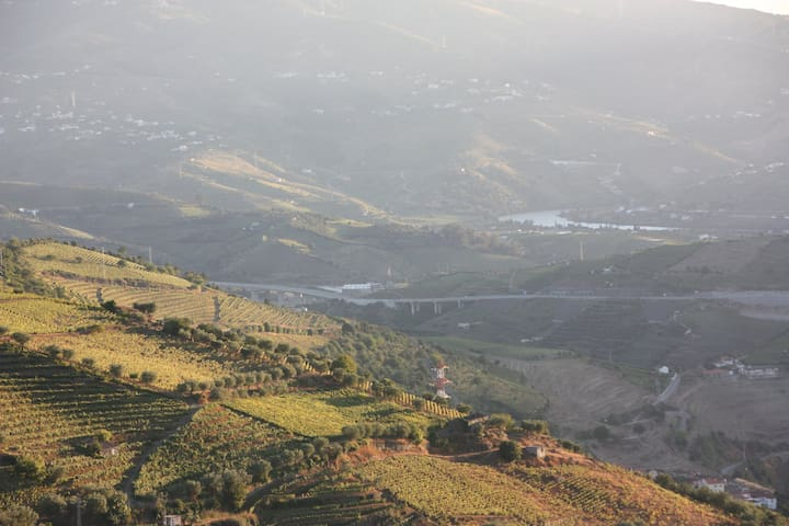 Poiares, Douro Valley