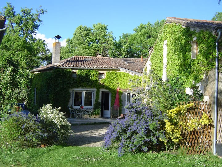 Confortable house, vineyards & historical places !