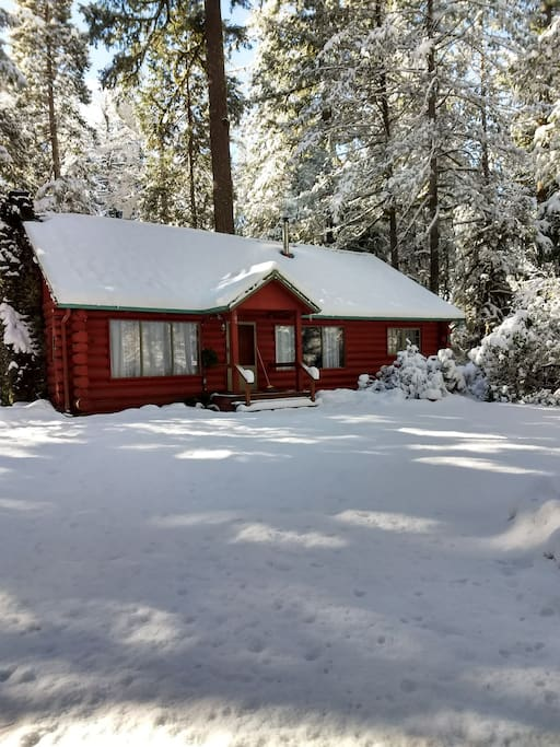 Feb 22 this is how it looked outside the cabin today!  who wants to come play in the snow?