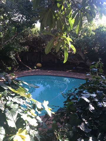Self contained small studio with pool access - Cape Town - Leilighet