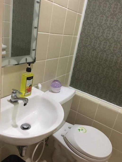 Toilet w/ bidet, hand soap & tissue