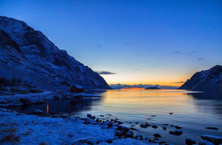 Fjellheimen utleie,Lofoten