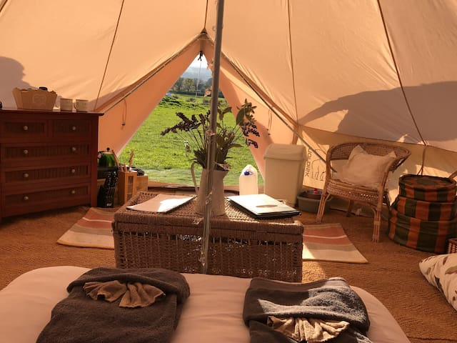 Bedw Snowdonia Glamping Bell Tent - Llanllechid - Teltta