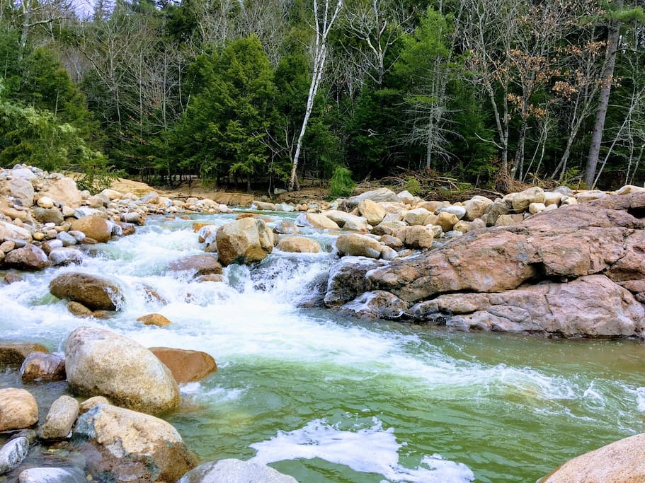 private swimming hole on the Rocky Branch (10 min walk).