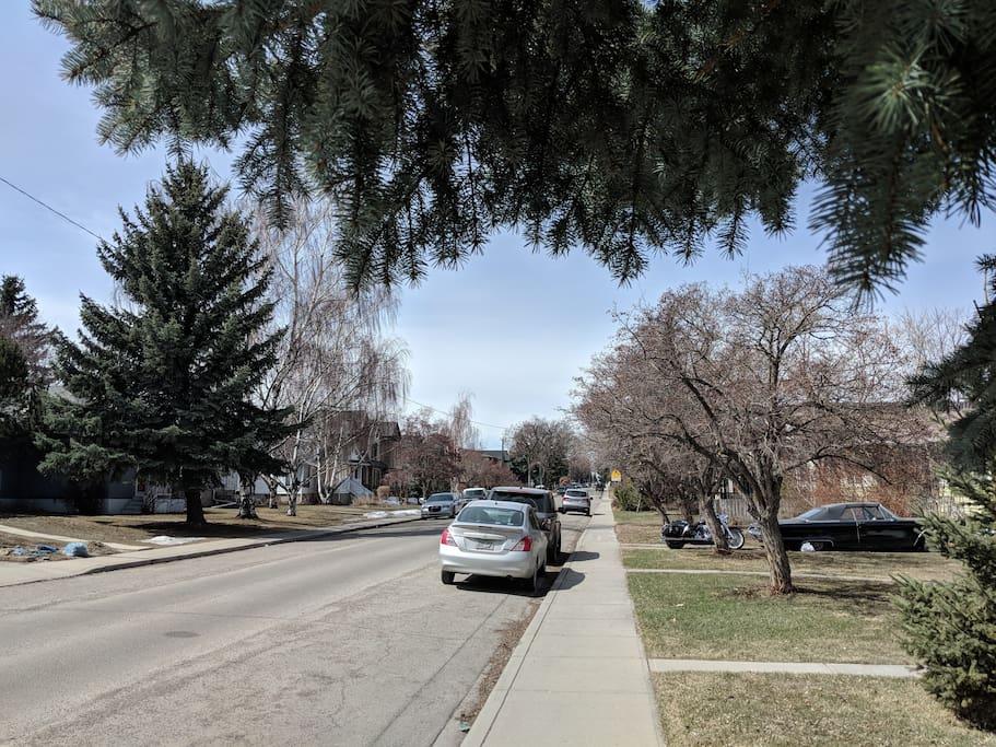 Quiet neighbourhood in Calgary inner city