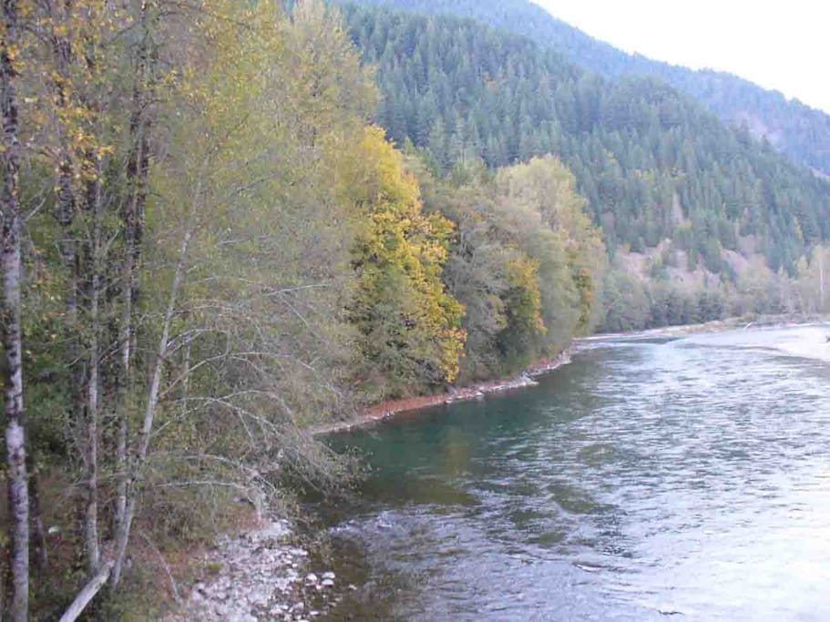 Skagit wild and scenic river