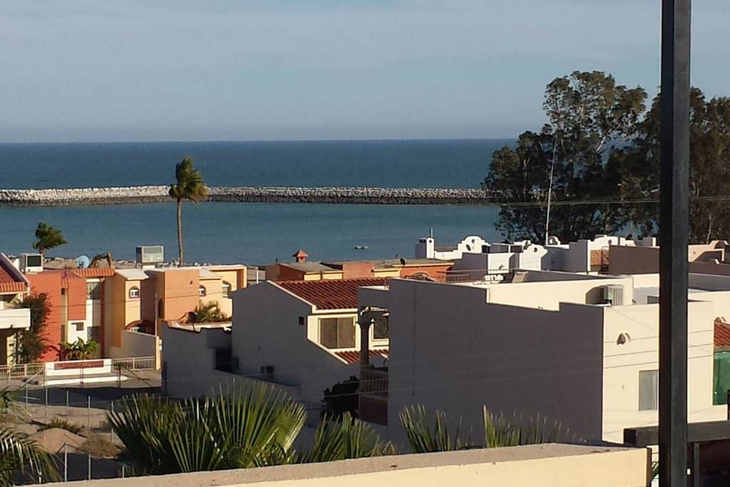 You can walk to the San Felipe Marina  from our Condos where you can get the fresh catch of the day.