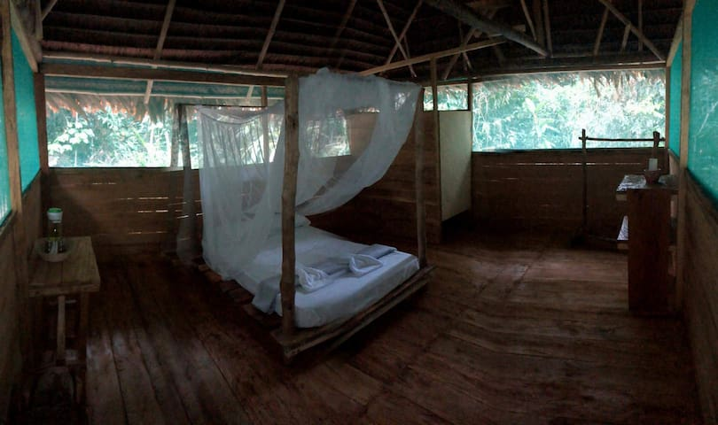 In the Heart of the Amazon Rainforest, a Retreat