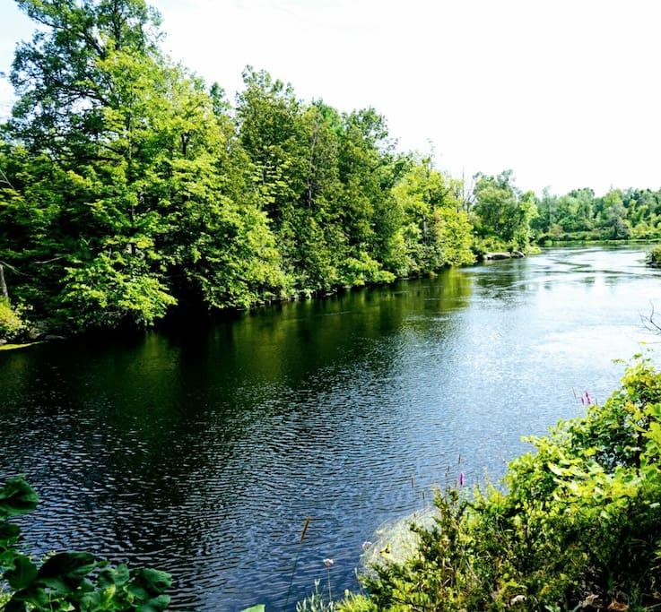 Gananoque River: Perfect for kayaking 1 block away.