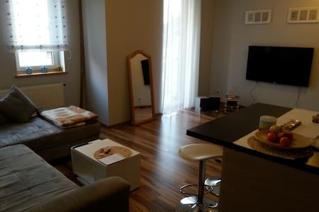 Apartment with garage near airport with free WIFI - 波茲南(Poznań) - 公寓