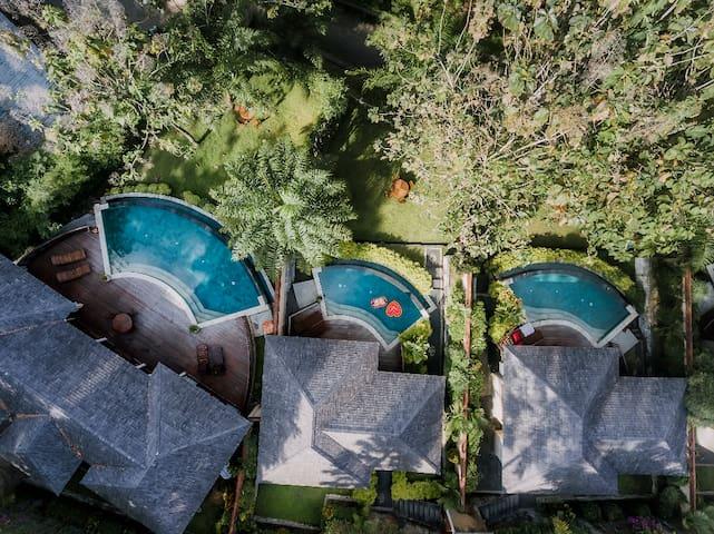 Wonderful Lush Jungle 1 Bedroom Private Pool Villa