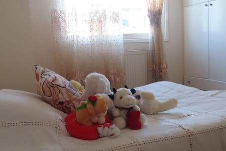 Sunny Room in Nicosia - Strovolos
