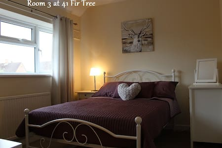 Large Double Room: 41 Fir Tree Road, GU1 1JN - Гилфорд