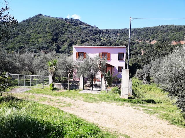 Hidden traditional cretan house in nature!