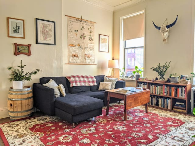 Homey & Spacious Prospect Heights — Entire Apt