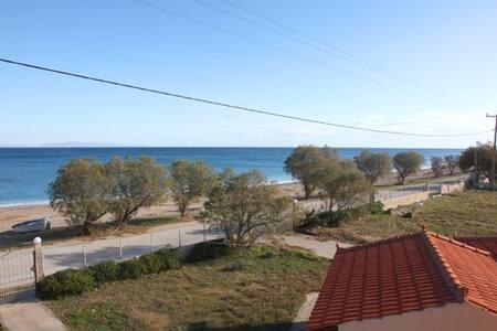 Mourteri house on the beach