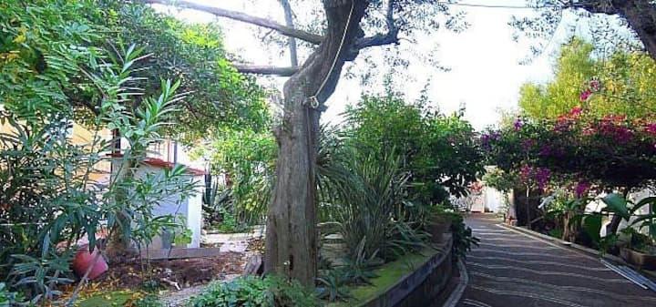 Casa Miriam B