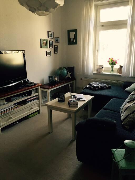 gemütliches Wohnzimmer mit Flachbild-TV, großer Couch und Büchersammlung