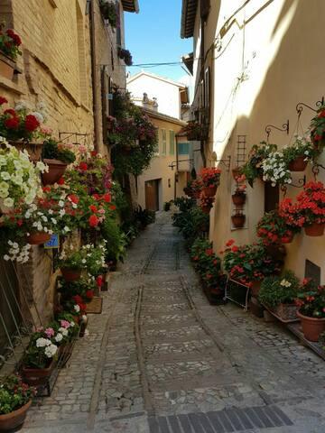 La casa del vicolo in fiore