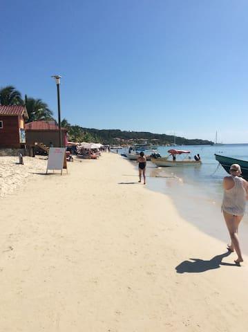 Roatan bay islands only 4 hrs away
