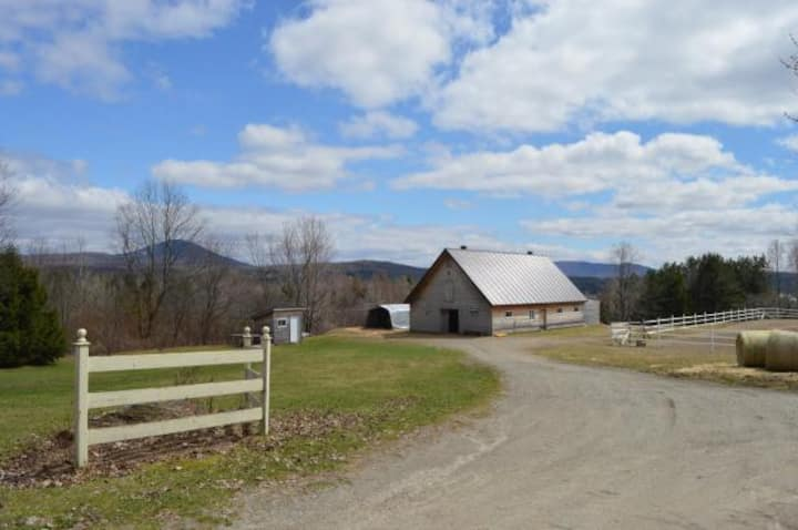 60 acres of nature, views, family-friendly, horses