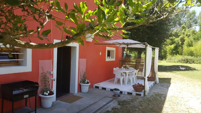 Appartamento ideale per famiglie - Pisa - Apartamento