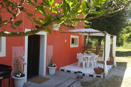 Appartamento ideale per famiglie - Piza