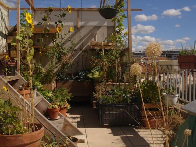 Chambre dans appart avec terrasse près Timone
