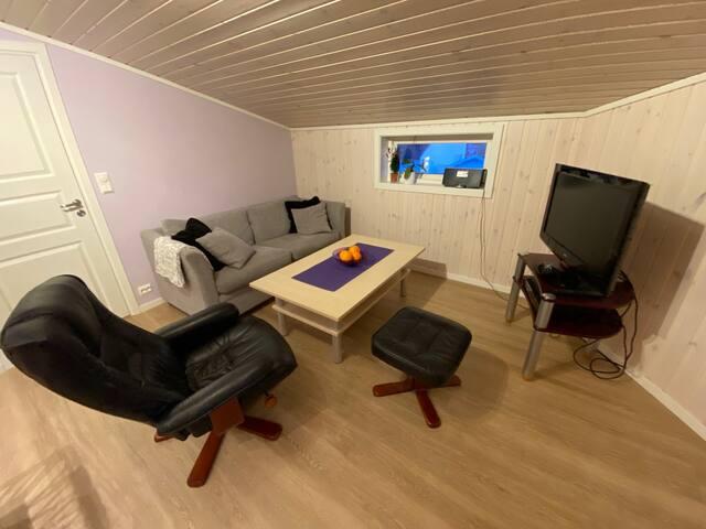 Sentrumsnær romslig leilighet i rolig strøk