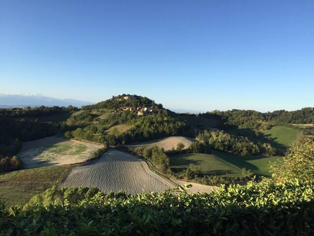 Colline del Monferrato- Cocconato Casa della Rosa