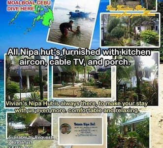 Package tour 3nights and 4 days - Moalboal - Departamento