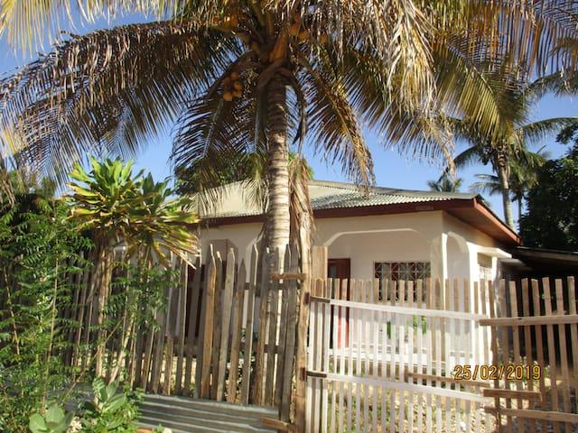 La casa del Tulear, chez Nivo, , sweet home