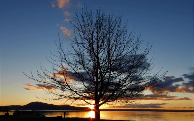 Sunset at the local reserve looking towards Mokoia Island across Lake Rotorua.