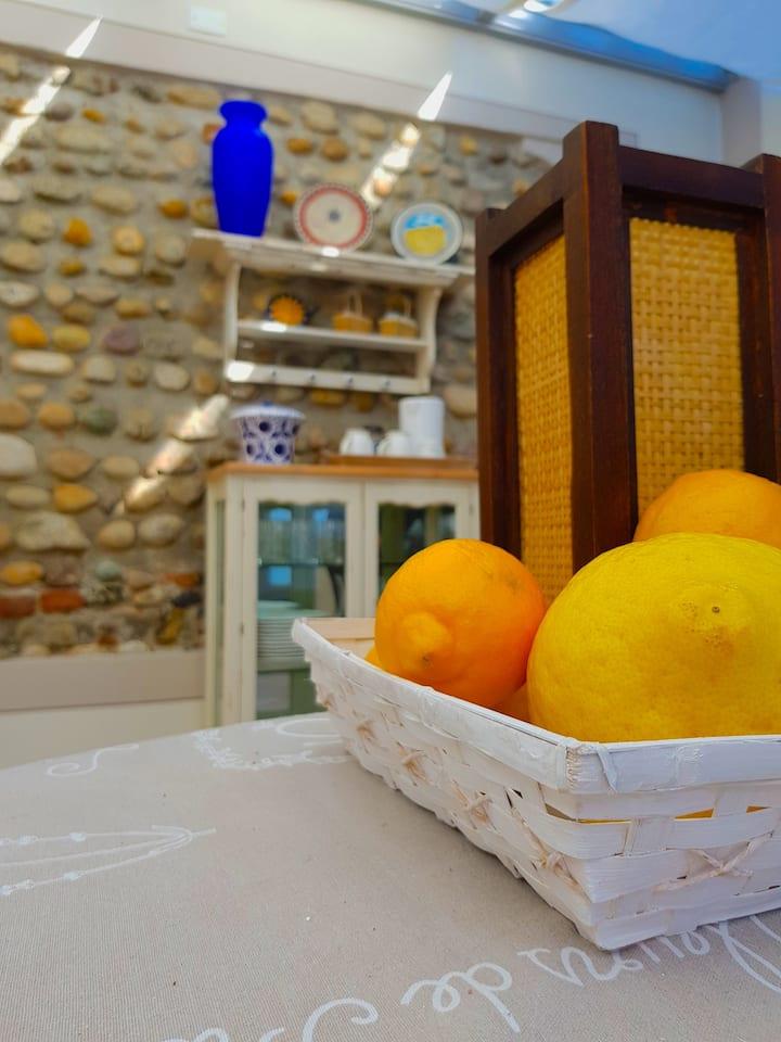La Terrazza dei Limoni monolocale con veranda
