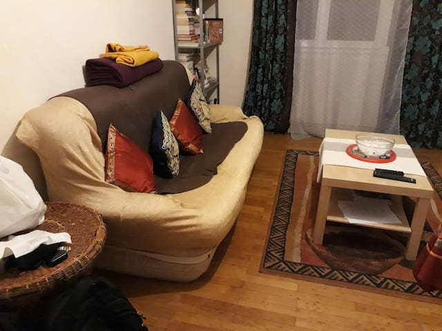 Executive apartment free parking after 7PM & WiFi