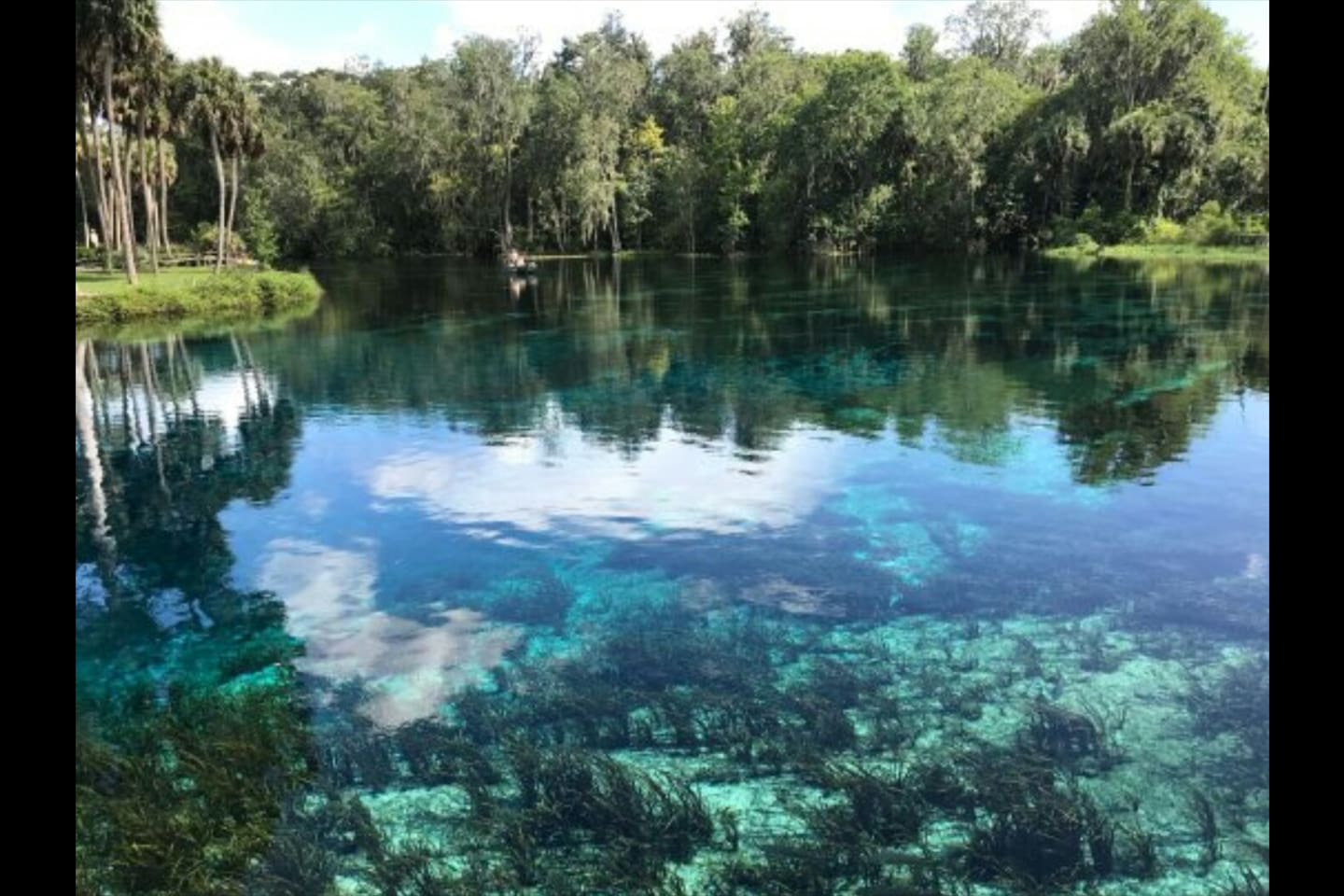 Silver Springs State Park Springs head. Less than 1/4 mile away!