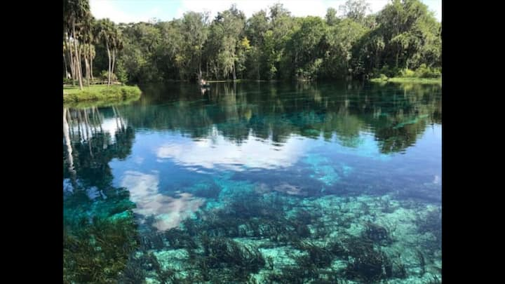 HOP, SKIP AND A JUMP TO SILVER SPRINGS