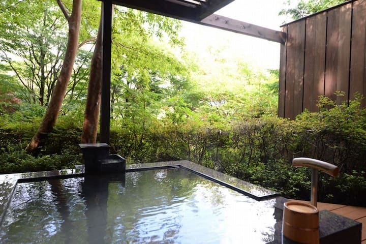 【Michi or Iwao】Hakone / Kowakudani ★All rooms are with open-air hot spring baths free-flowing from the source (2 meals)