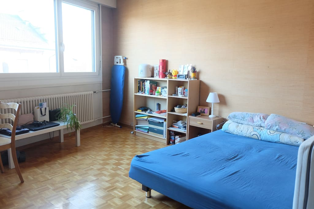 Nice And Cozy Studio In The Heart Of Geneva Apartments For Rent In Gen 232 Ve Gen 232 Ve Switzerland