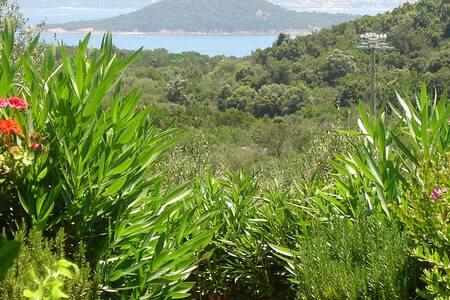 Bouganville2 Porto Cervo Capriccioli - Capriccioli