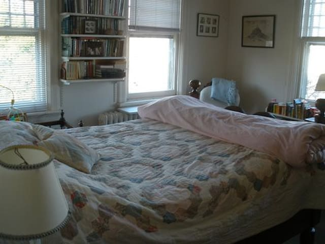 Bedroom with full bed, closet, bureau, bookcases