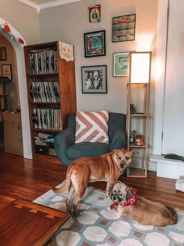 Our 2 dogs, Edgar and Annabel will be around to greet you and love on downstairs but do not venture to your area upstairs.