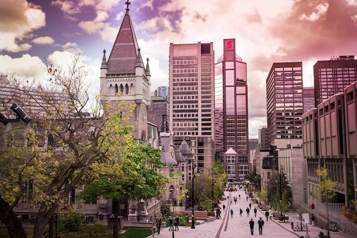 McGill University looking downtown
