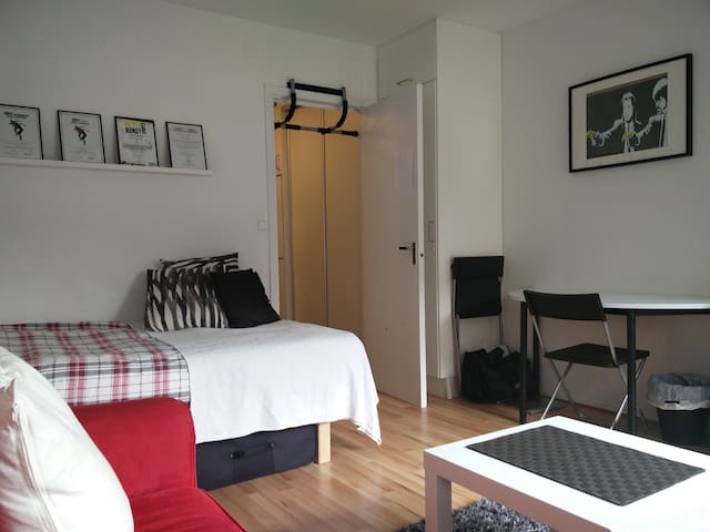 Fresh Fully Furnished Summer Apt - Lund - Apartment