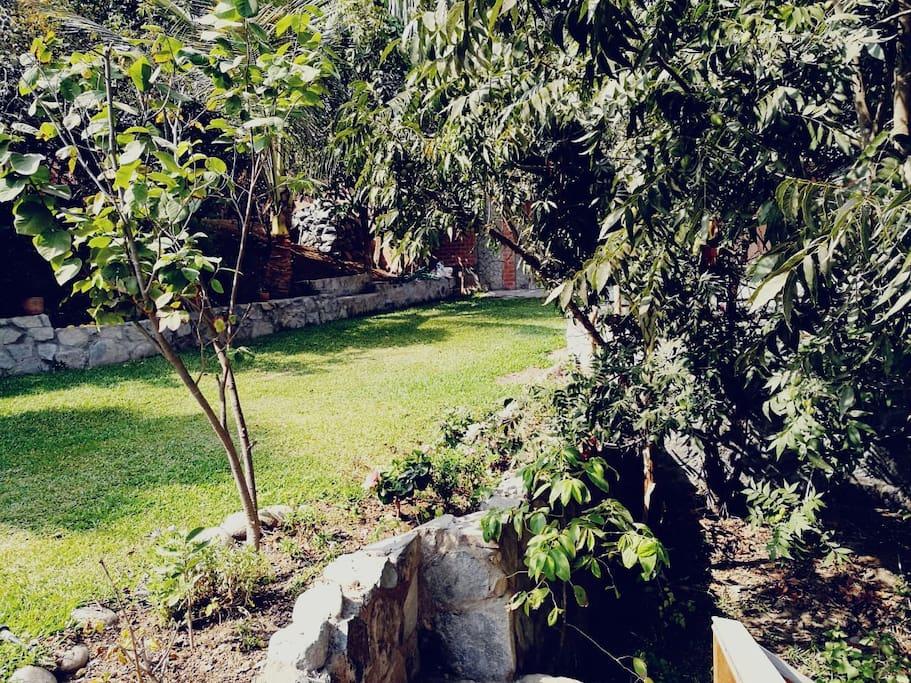 Hermoso jardín con frutales