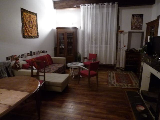 Bel appartement 4 pers. hypercentre - Grenoble - Huoneisto